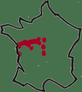 Région Loire vin