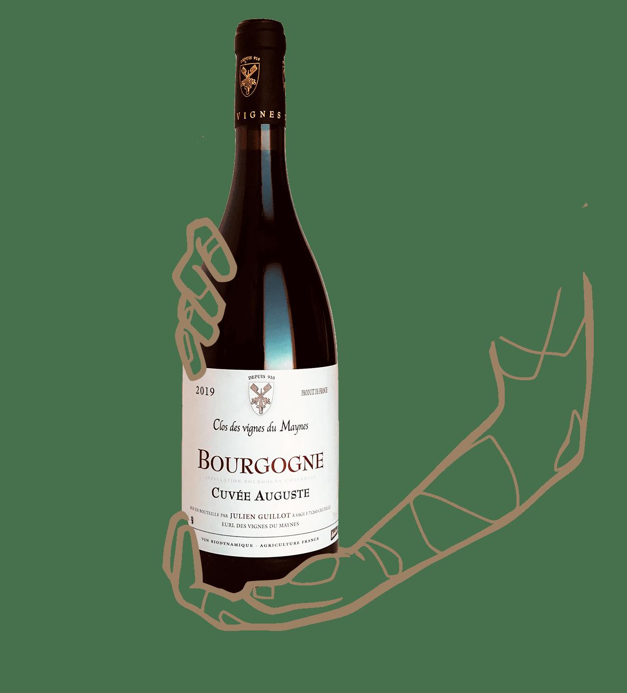 Auguste est un vin naturel de bourgogne du domaine le clos des vignes du maynes