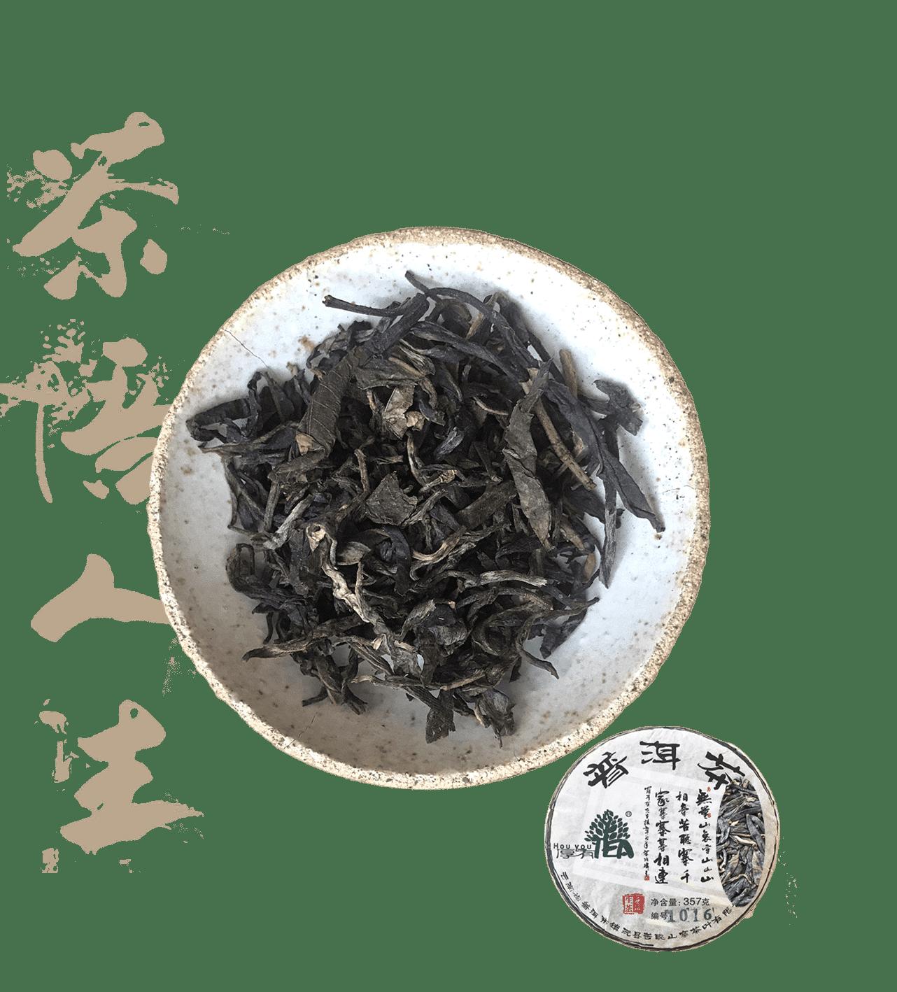 hou you tea 1016 est un thé pu erh sheng