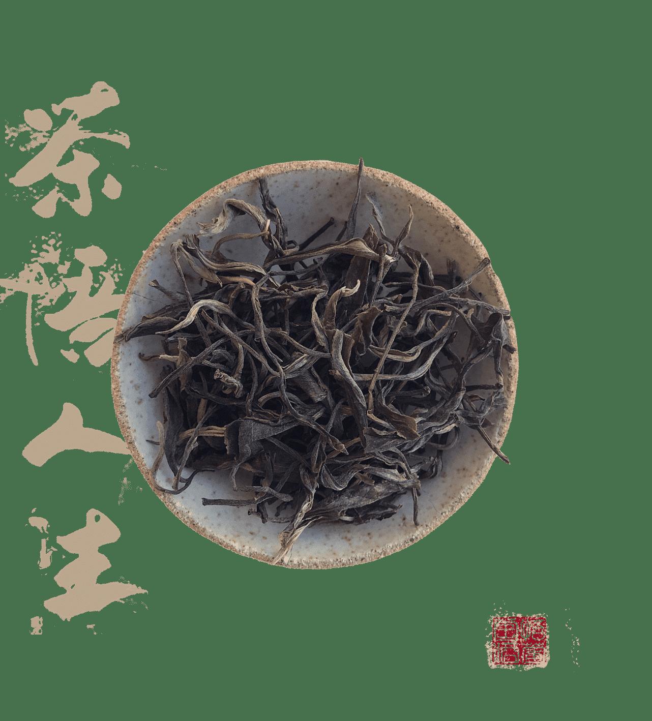 Xiao hu sai gu shu un thé pu erh cru sheng en maocha de vieux arbres
