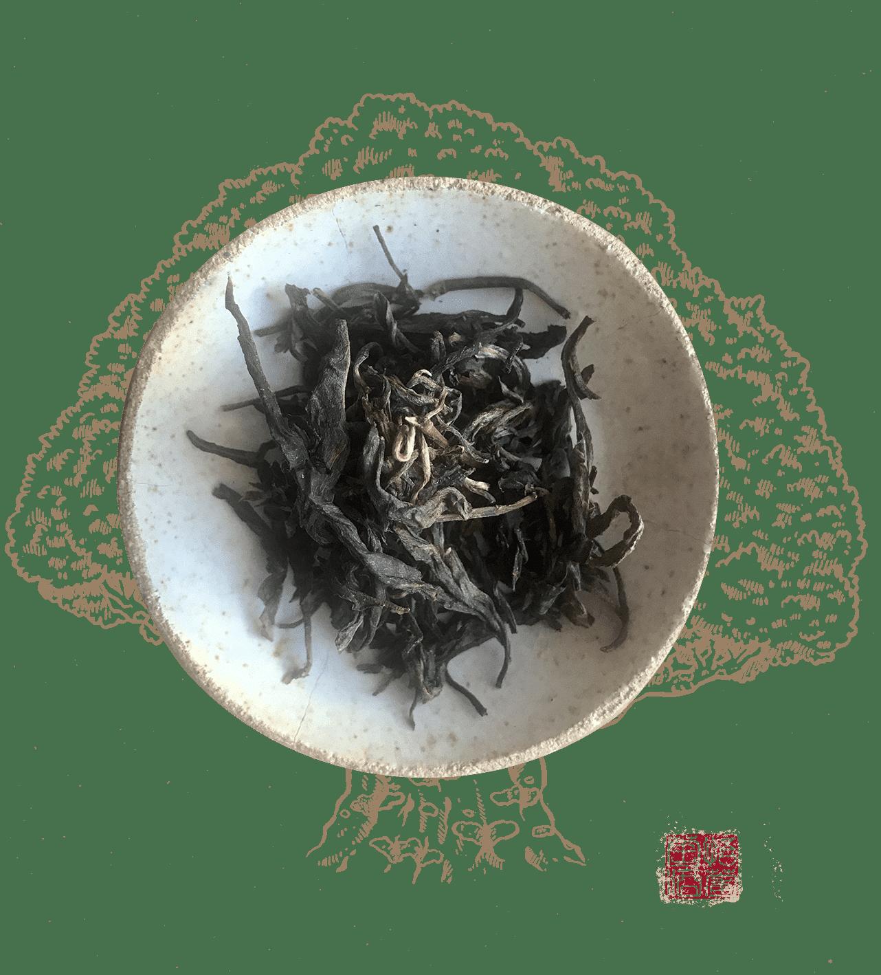 wang bing shen tai est un thé Pu erh de la région d'Yiwu