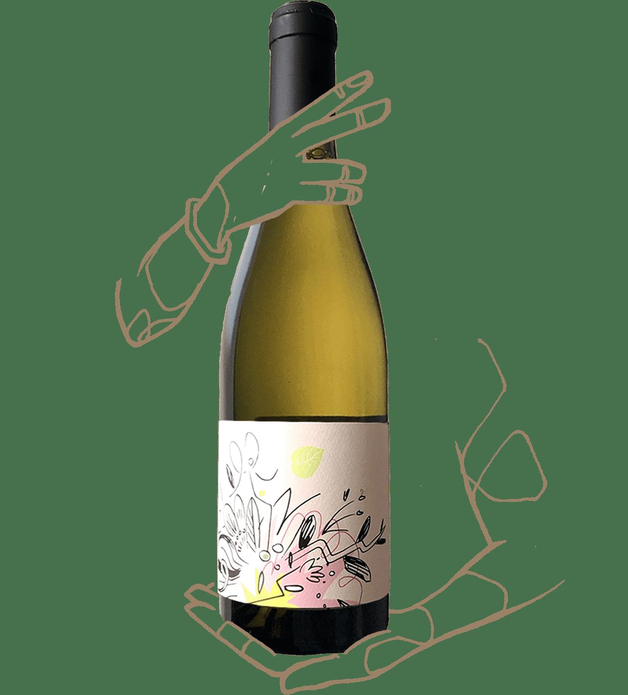Bloom - Vin des Potes X Rémi Pouizin est un Vin naturel