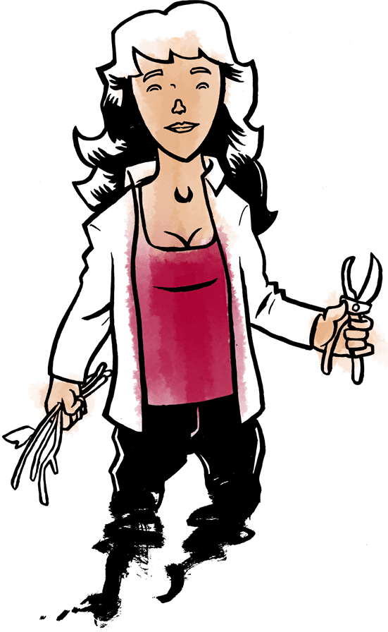 Illustration d'une vigneronne.