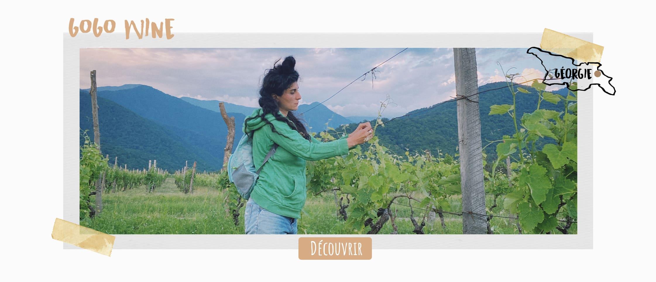 Gogo wine - vin naturel de Géorgie