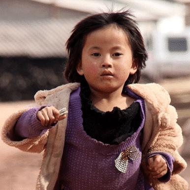 enfant yunnan thé puerh à guafengzhai